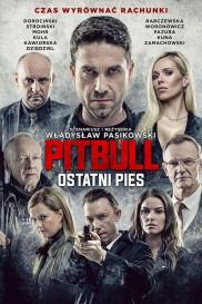 Pitbull. Last Dog